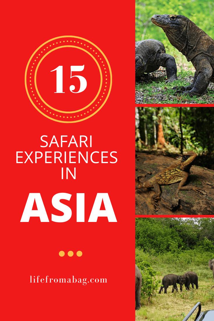Safari in Asia