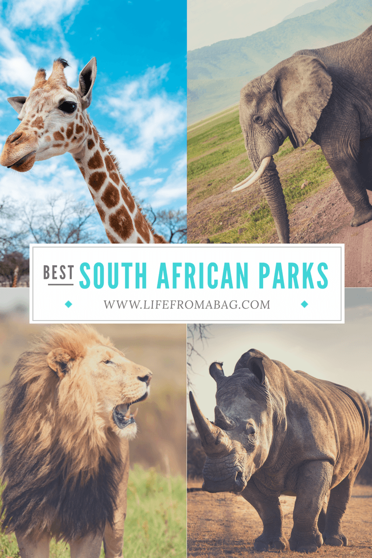 Best National Parks in South Africa