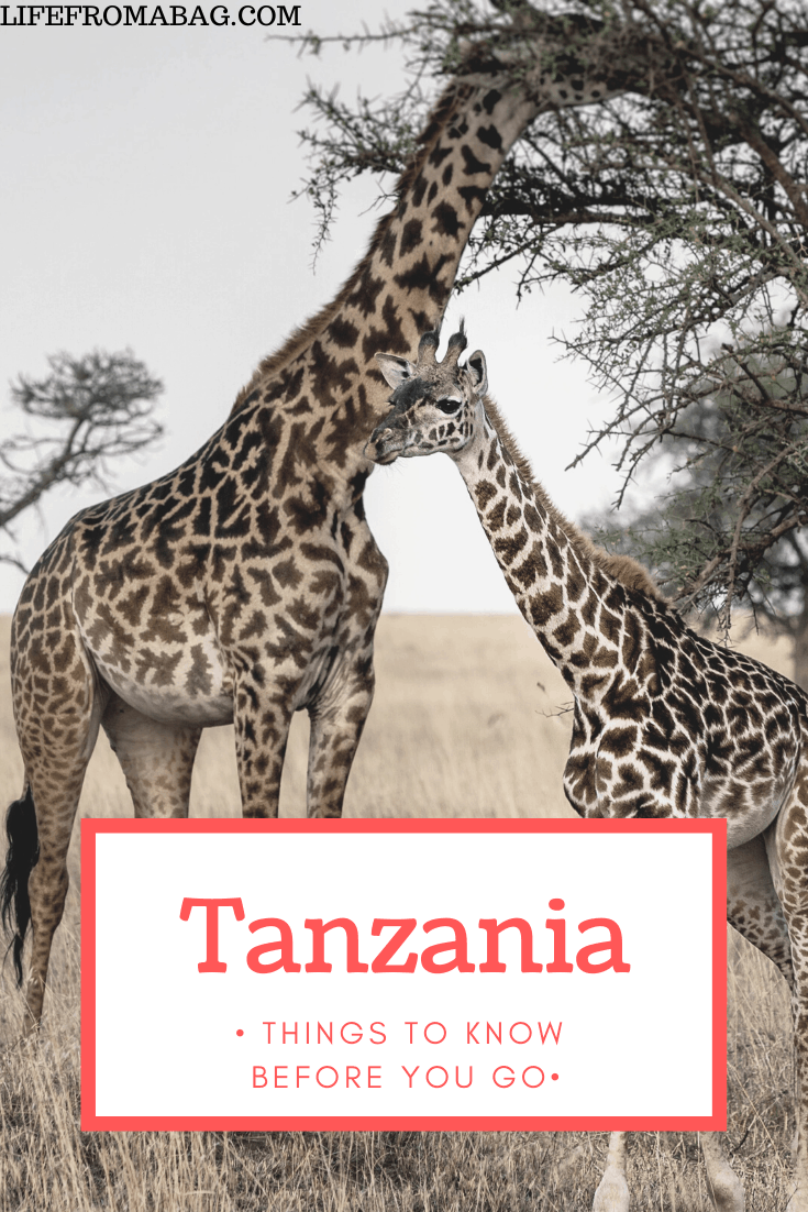 visiting Tanzania for the first time