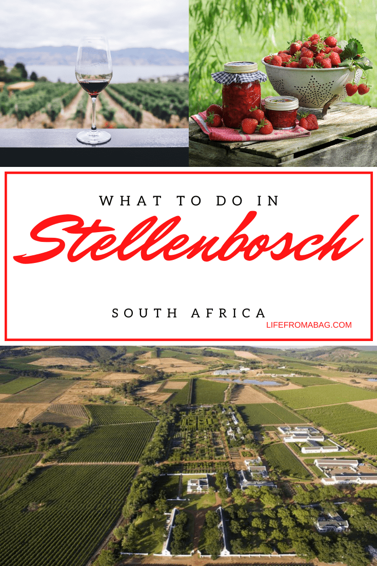 fun things to do in Stellenbosch